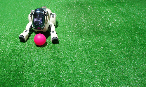 Robotic dog with red ball